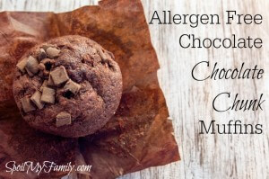 Chocolate Muffins – Things You Don't Want Your Kids To Know, Shhhhh!