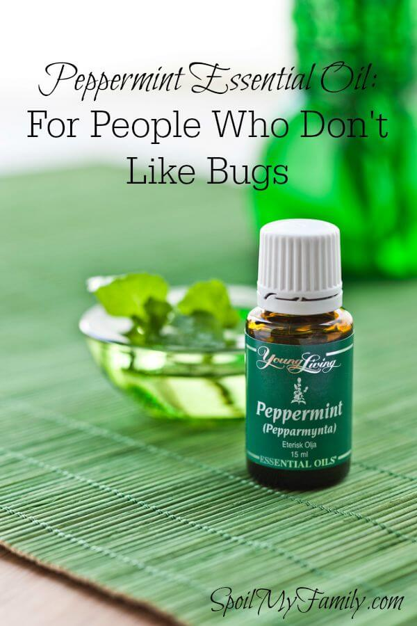 Peppermint essential oil is perfect for people who don't like bugs! #peppermintessentialoil #cleankidsrooms