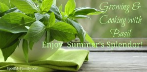 Growing & Cooking with Basil – Enjoy the Delight of Summer