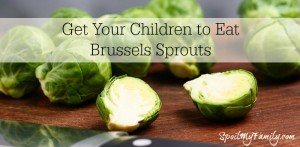 Here Are Some Great Tips for Getting Your Children to At Least Give the Brussels Sprouts the Old College Try