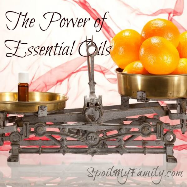 Find your highest wellness with essential oils! #essentialoils