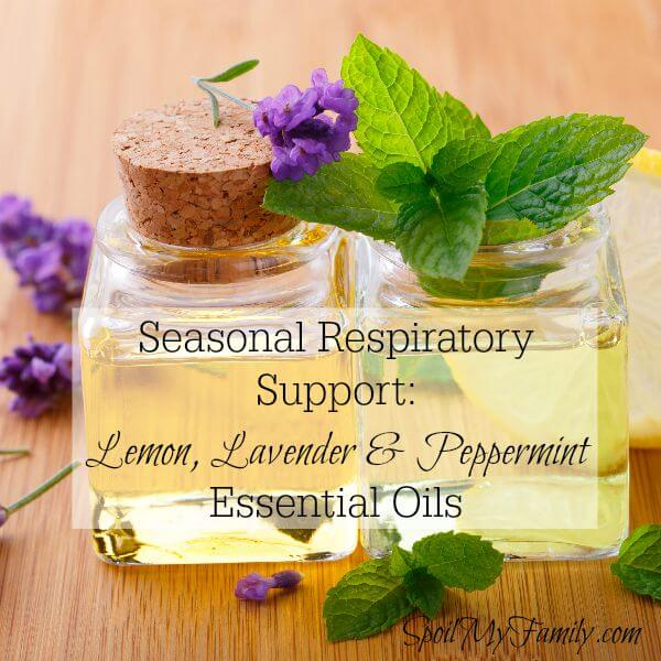 Get powerful seasonal respiratory support with therapeutic grade lemon, lavender, and peppermint essential oils. www.themidlifemamas.com #nautralrespiratorysupport #essentialoils #youngliving #lemonlavenderpeppermint