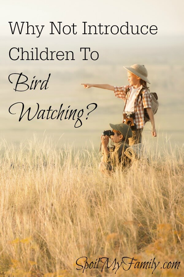 Bird watching can be an amazing lifetime hobby and it's perfect to start when your children are young. Young children are naturally curious and are sponges for knowledge. They love animals and so it just seems like a perfect fit! www.themidlifemamas.com #birdwatching #familytraditions