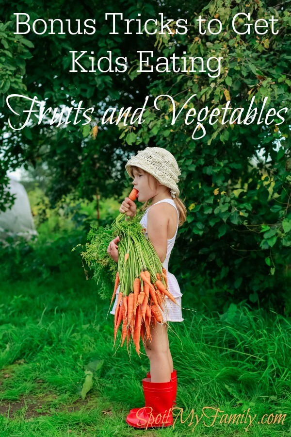 What can you do to get your children to eat fruits and vegetables? And to LIKE them? Here is the information you need to know about the development of the sense of taste and how to use it to your advantage to get your children eating fruits and veggies like a pro in no time! www.themidlifemamas.com
