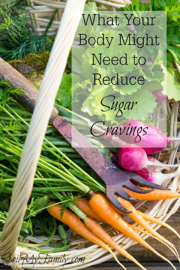 Do essential nutrients have anything to do with helping you reduce sugar cravings? You bet! Put this information in your arsenal to reduce sugar cravings. www.themidlifemamas.com