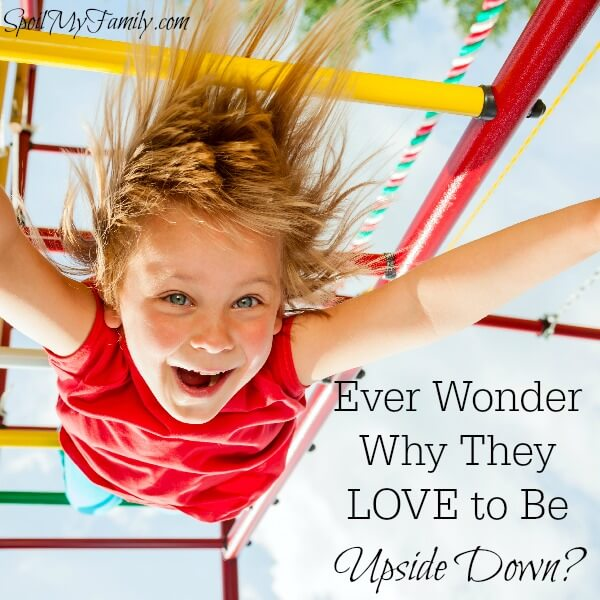Sometimes I wonder - WHY on earth are they doing THAT? This was what I needed to know to connect with my child so that I wouldn't have to ask that any more. www.themidlifemamas.com