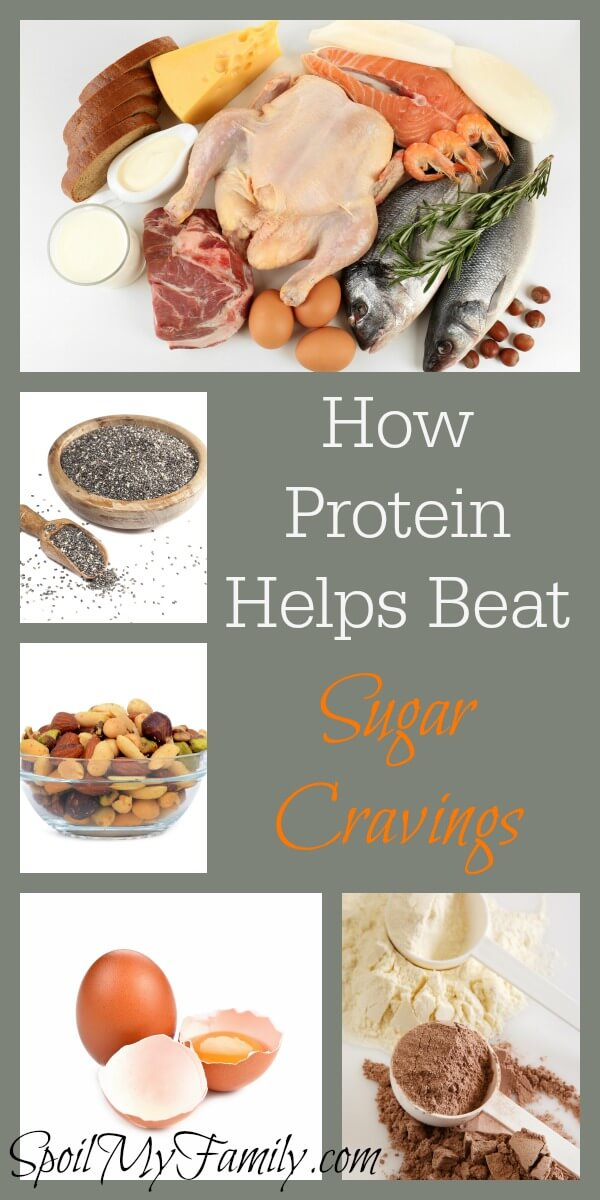 How can protein help keep sugar cravings at bay - but how much do you need? When should you be eating protein? The top things you need to know about protein, right here. www.themidlifemamas.com