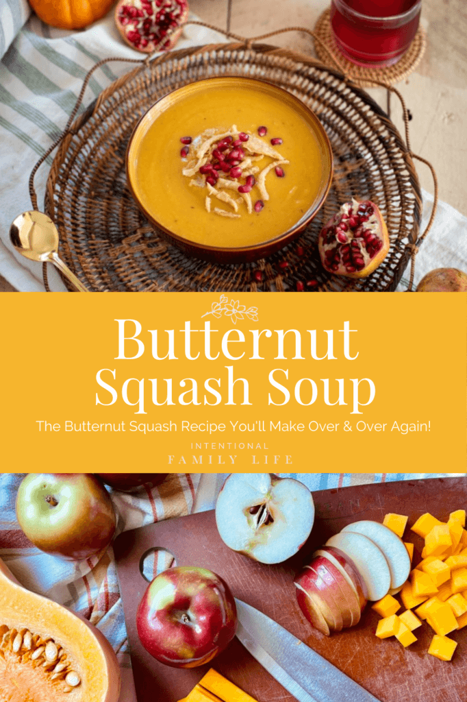 Image of bowl of butternut squash soup with apple and pomegranate seeds