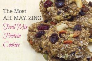 The Most AH. MA. ZING. Trail Mix Protein Cookies Ever!