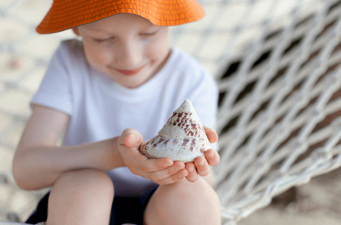 The 25 Most Captivating Beach Books for Children