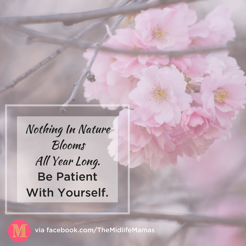I would love to know how to be patient with myself. Love and patience with children comes more easily to me than having love and patience with myself. I love this trick that helps me be patient with me and makes me feel like a better mom!! #patience #selflove #motherhood www.themidlifemamas.com