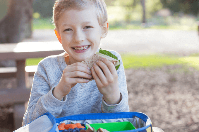 150+ of the Best Healthy Lunch Ideas Your Kids Will Devour