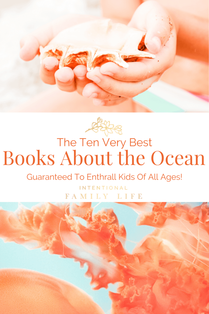 Image of child's hands holding shell at the beach and second image of jellyfish in ocean - for concept of books about the ocean and ocean facts