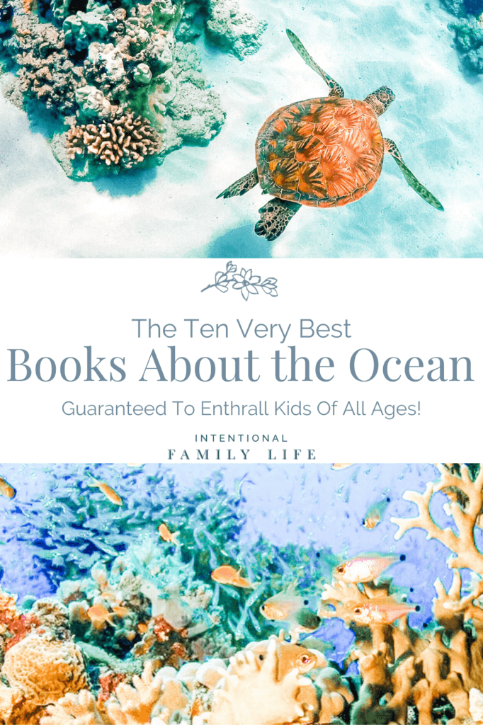 image of sea turtle swimming and second image of undersea coral and fish to represent concept of books about the ocean for kids of all ages