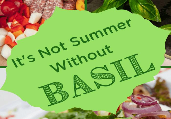 Basil-Pin